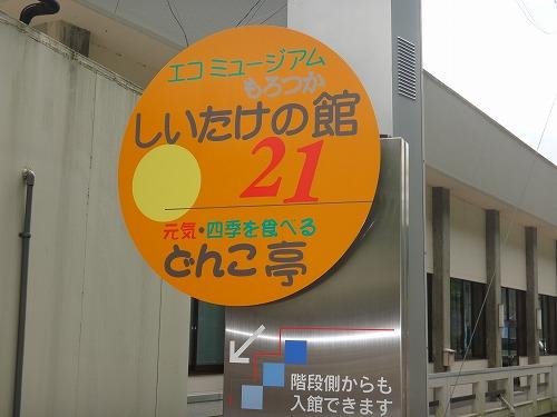 DSC03809.jpg