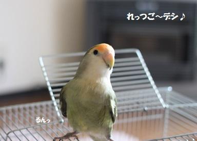 2014321.jpg