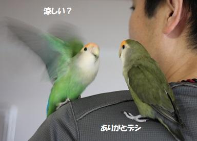 2014357.jpg
