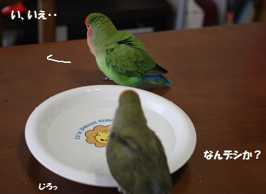 2014363.jpg