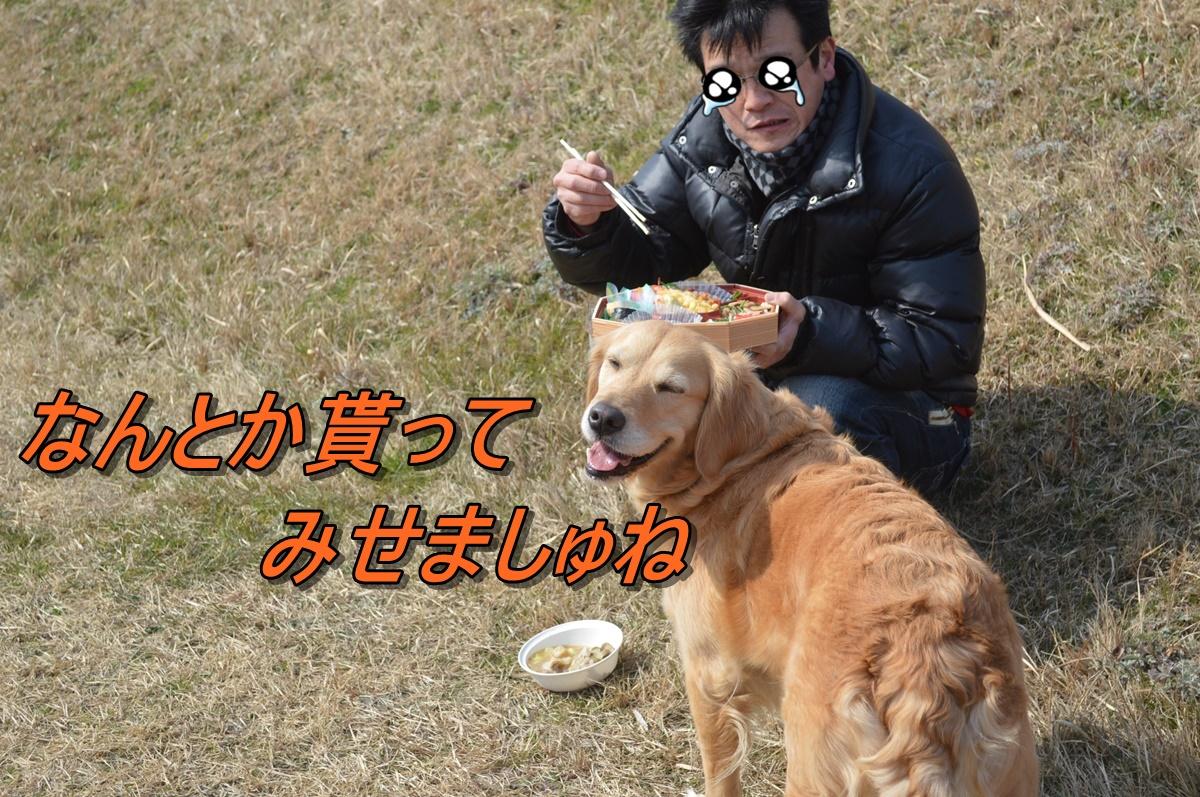 DSC_2450.jpg