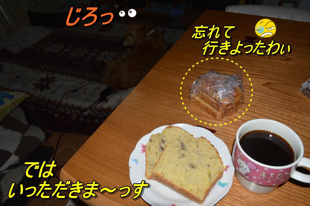 DSC_2522.jpg