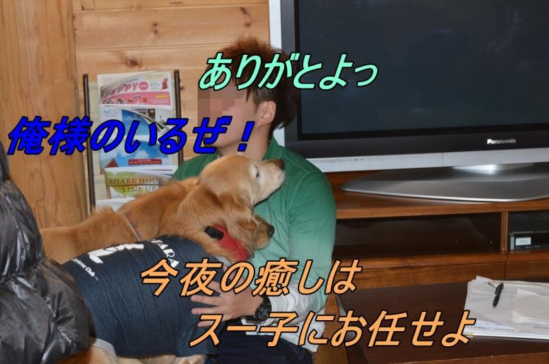 DSC_2687_20140324212133b61.jpg
