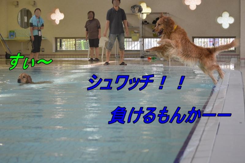 DSC_2816.jpg