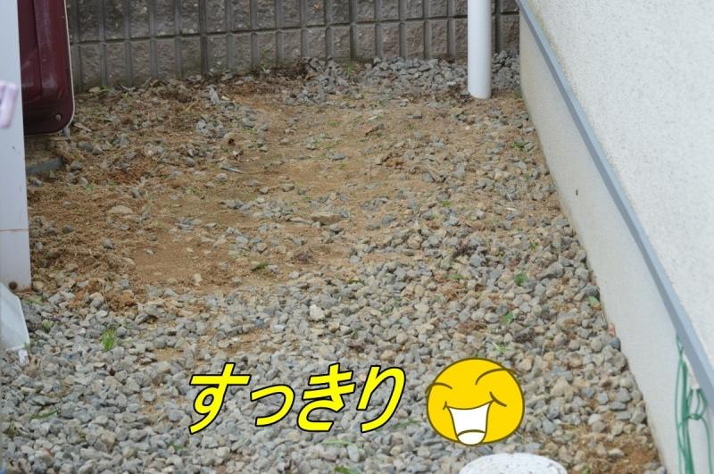 DSC_3292.jpg
