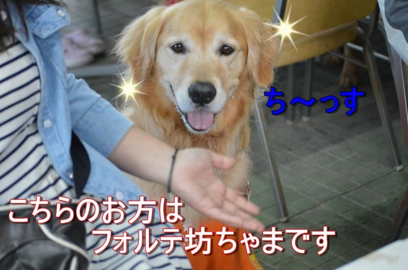 DSC_3488.jpg