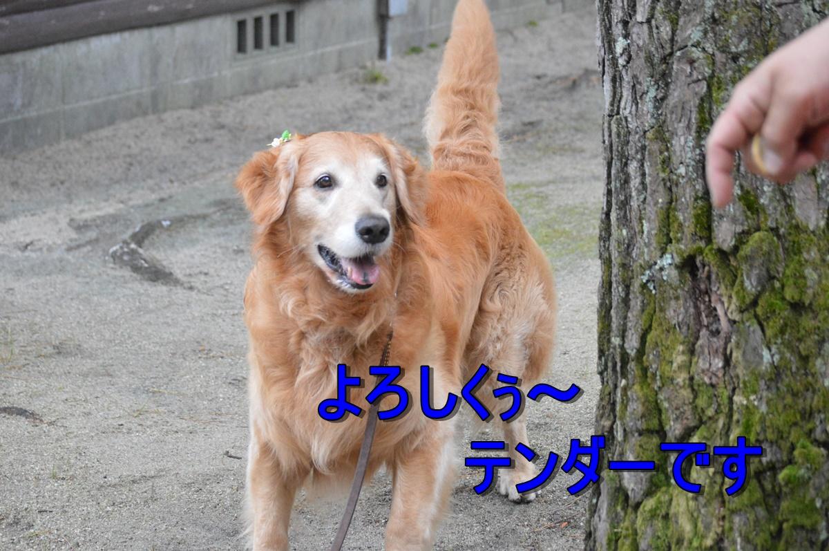 DSC_3508.jpg