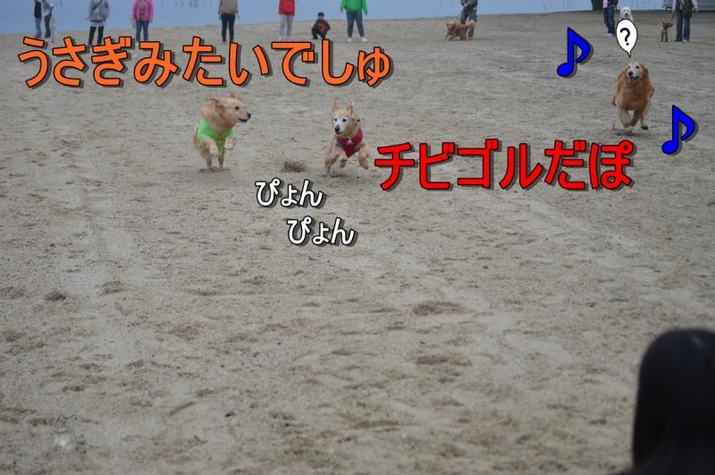 DSC_3554.jpg