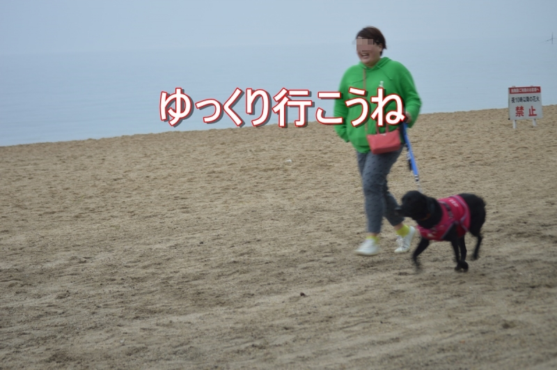 DSC_3669.jpg