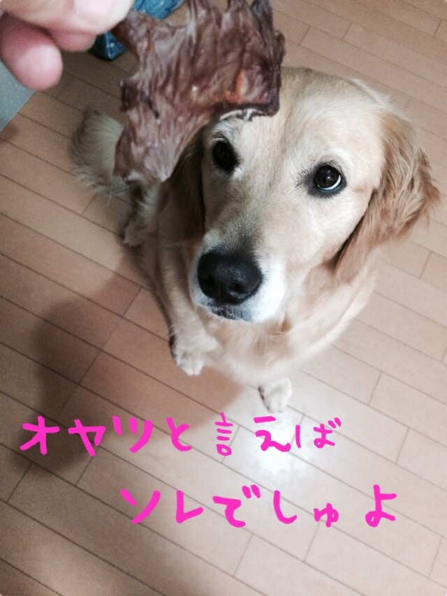 fc2blog_201407032217001c4.jpg