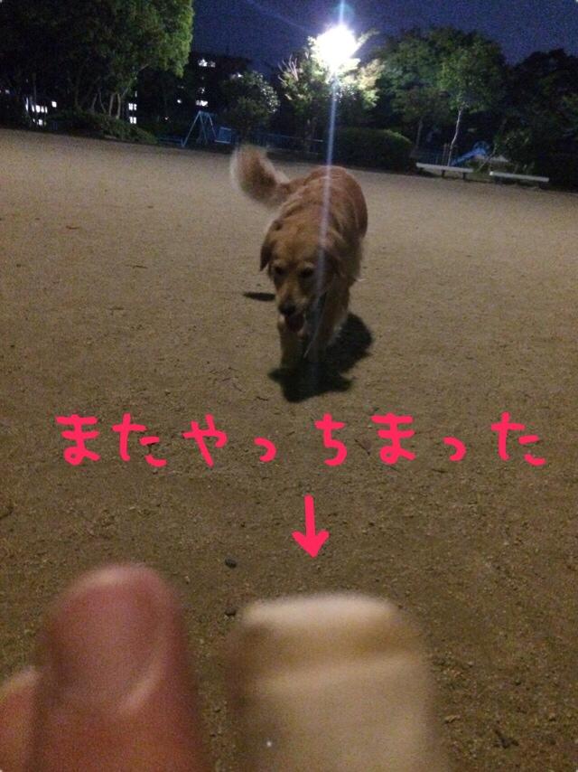fc2blog_201407292107464a1.jpg