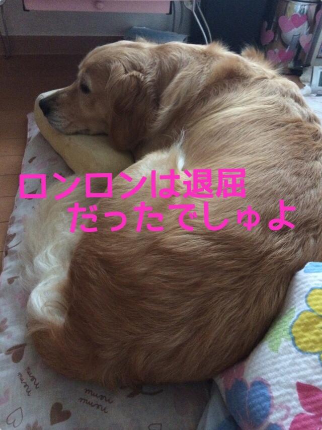 fc2blog_2014081822230965c.jpg