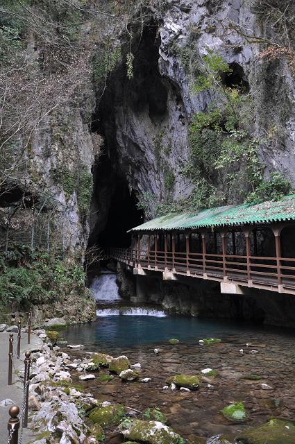 1403yamaguchi (2)