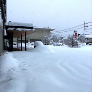 snow02-300x300.png