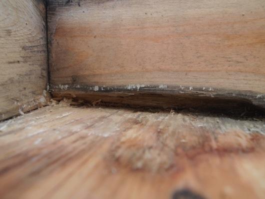 panelhouse5_06.jpg
