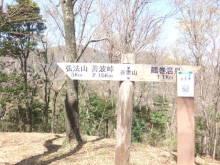 走りつづける RUN ニャー-弘法4