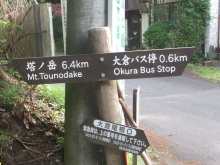 走りつづける RUN ニャー-2
