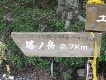 走りつづける RUN ニャー-6
