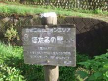 走りつづける RUN ニャー-裏高尾10