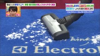 electrolux-sojiki-007.jpg