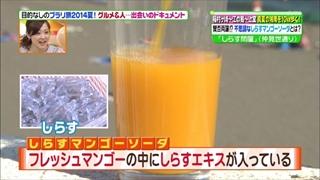 hinagata-akiko-004.jpg