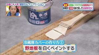 self-renovation-20140415-009.jpg