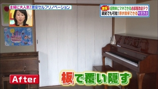 self-renovation-20140415-021.jpg