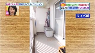 self-renovation-20140415-032.jpg