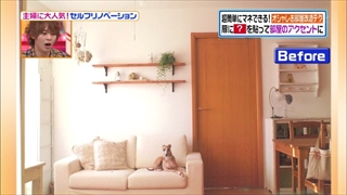 self-renovation-20140603-003.jpg