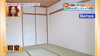 self-renovation-20140603-015.jpg