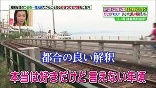 tsugunaga-momoko-005.jpg