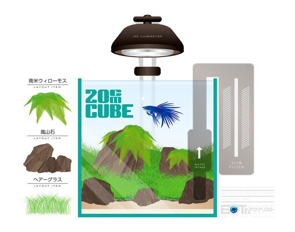 20cmcube2.jpg