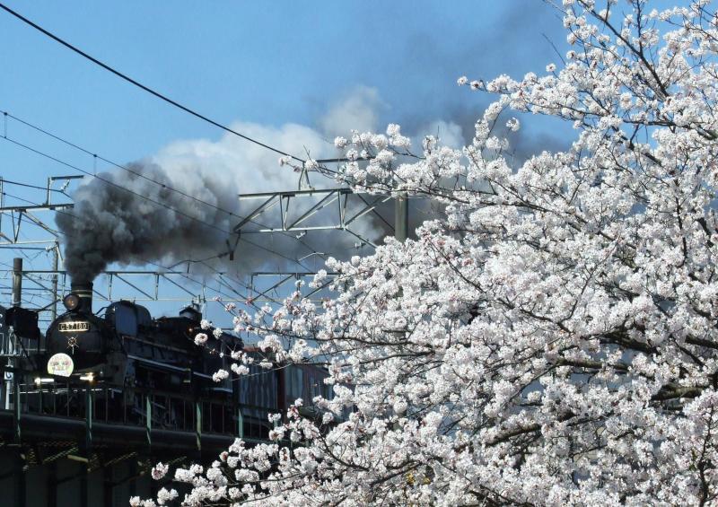 4014/03/23 信越本線(新潟-上沼垂信号所)新栗ノ木川橋梁