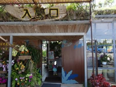 okinawa69