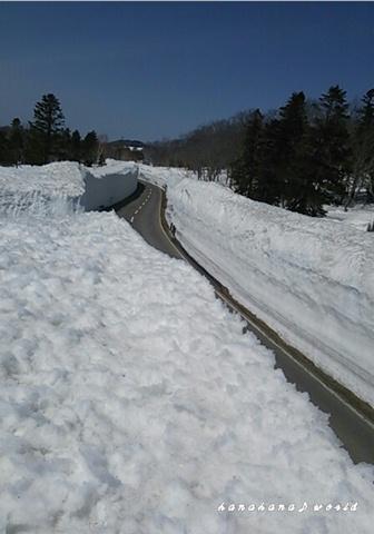 雪の回廊♪