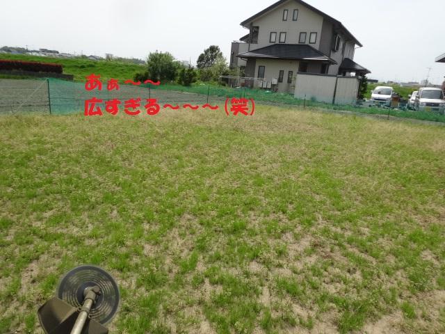 草刈り 004