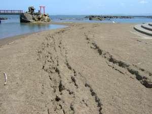 砂浜にできた亀裂