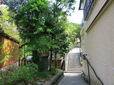 IMG_8552-yunisi.jpg