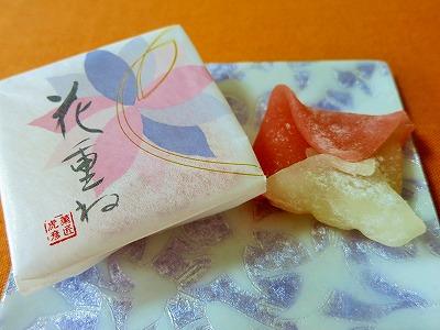 IMG_9123-bannkyu.jpg