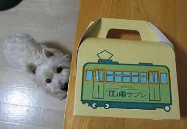 東京土産 003