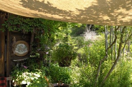 tasha_tudor_garden_10.jpg
