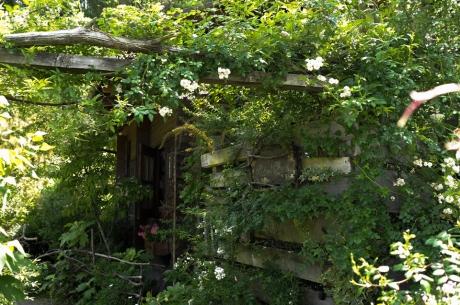 tasha_tudor_garden_3.jpg