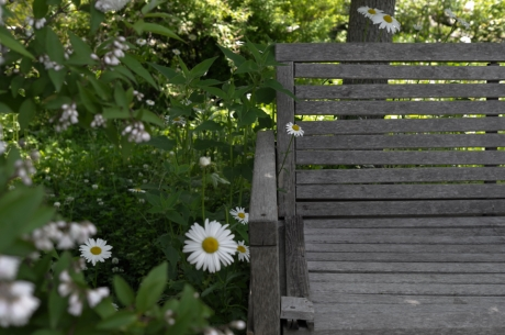 tasha_tudor_garden_6.jpg