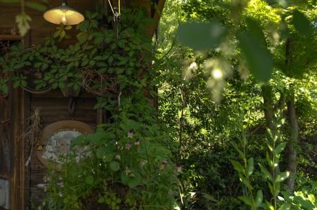 tasha_tudor_garden_7.jpg