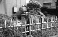 ポンプ井戸の跡①