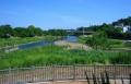 左・新河岸川と右・柳瀬川の合流点
