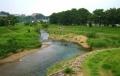 清瀬橋から見る柳瀬川