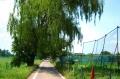竹林へ向かう道