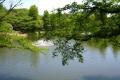 ひょうたん池①