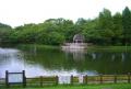 ひょうたん池②